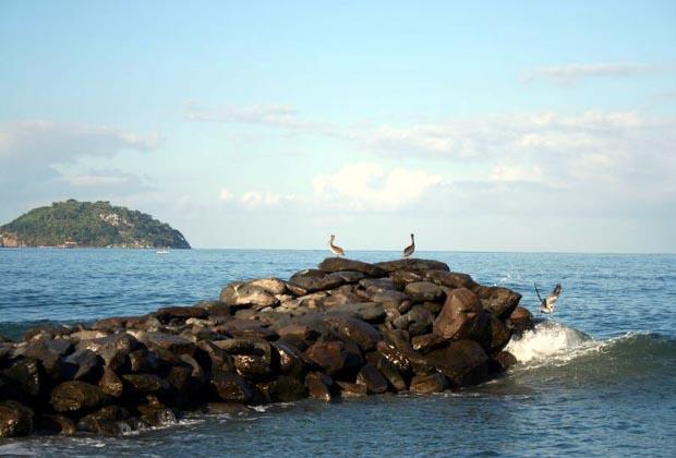 Casa Siestas y Olas Ocean View