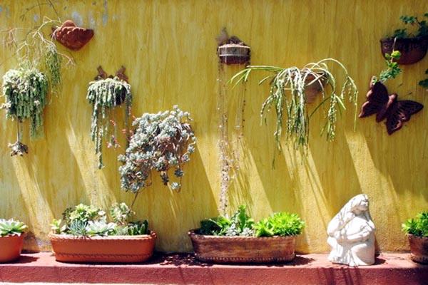 Garden Detail, Los Dos B&B, Jocotepec