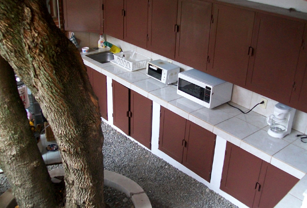 Angel Flores B&B Ajijic - outdoor kitchen and tree
