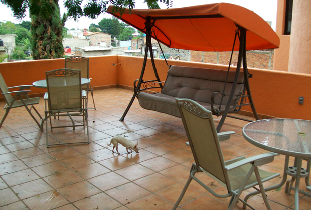 Angel Flores B&B Ajijic - swing and patio