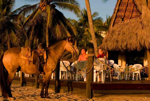 Costa Azul San Poncho Riviera Nayarit Horse waiting at Palapa Bar