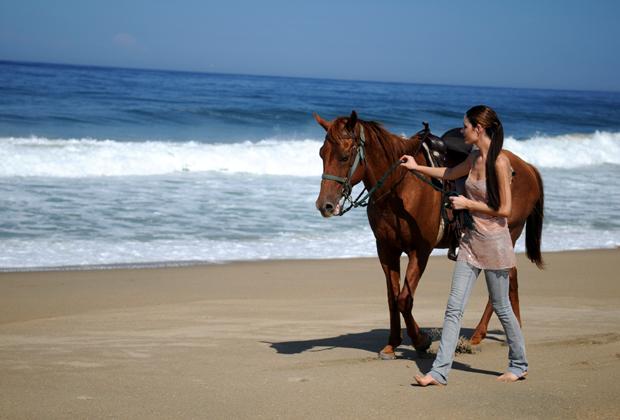Hotel Desconocido Barra de Navidad Highway romantic Horseback ride