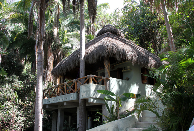 Tailwind Holistic Retreat San Poncho Nayarit Tamara Jacobi