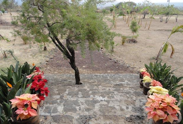 TepozSpa-Gay Travel  - Frontal View Tepoztlan, Morelos