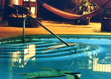 znight_pool2