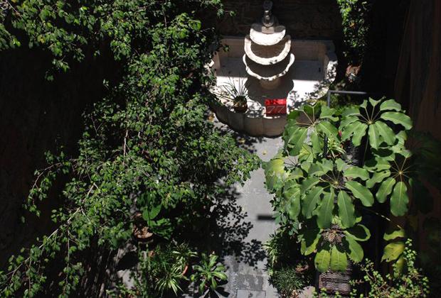 El Patio 77 Eco - B&B - Mexico DF - Garden in the City