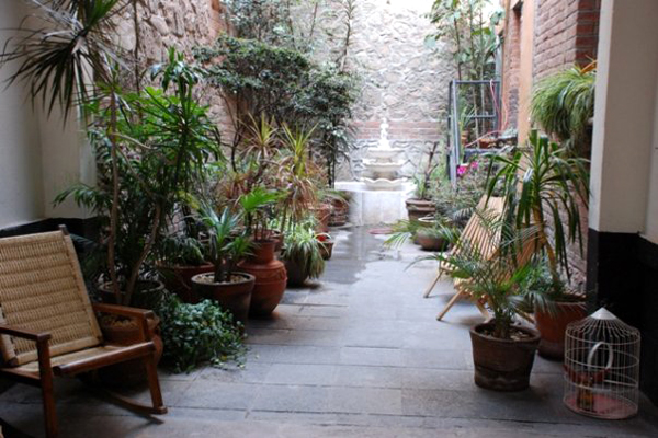 El Patio 77 Eco - B&B - Mexico DF - Lounge Garden in the City