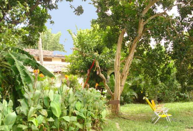Rancho el Limon Bucerias Organic Farm Accommodation Mexico