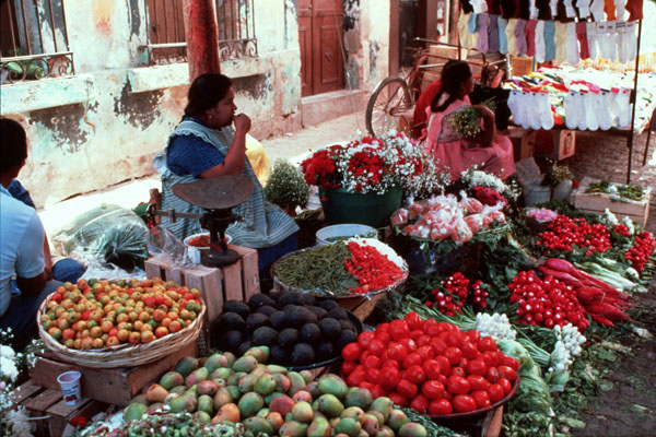 Tlaquepaque Guadalajara area Mexico Traditional market Vendors