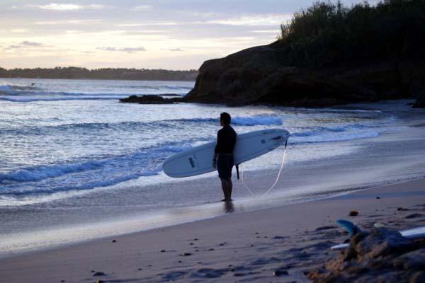 Wildmex Surf School Sayulita Mexico - Surf's Up!