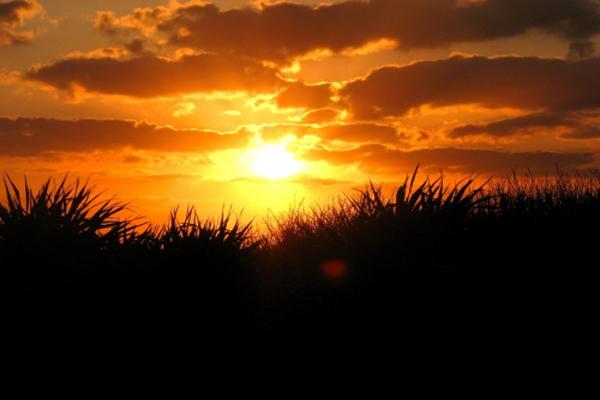 Casa Amor Del Sol B&B Tulum Dramatic Caribbean Sunset