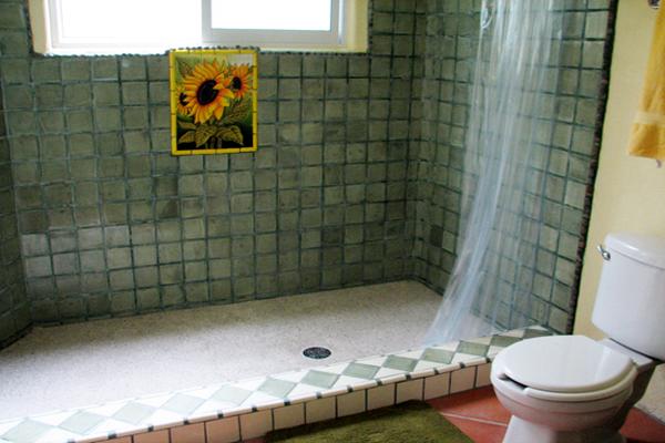 Casa las Mariposas Nuevo Vallarta Traditional Mexican Tile Washroom