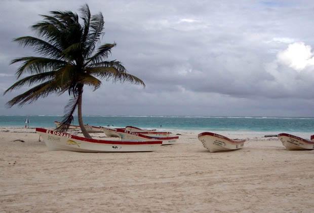 Secret Garden - B&B - Quintana Roo - Fresh Fish Pescado