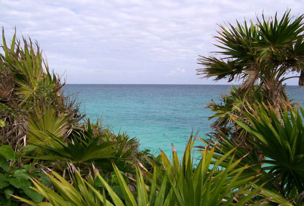 Secret Garden - B&B - Quintana Roo - Jungle Ocean View