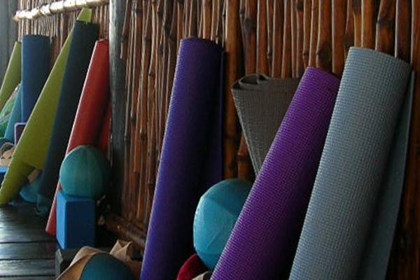 Shambala Petit Hotel Tulum Mexico Yoga Practitioner Training