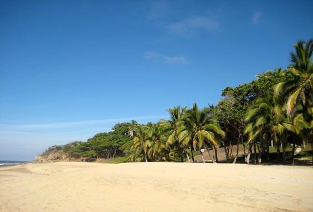 Tailwind Jungle Lodge Riviera Nayarit Mexico Yoga Certification