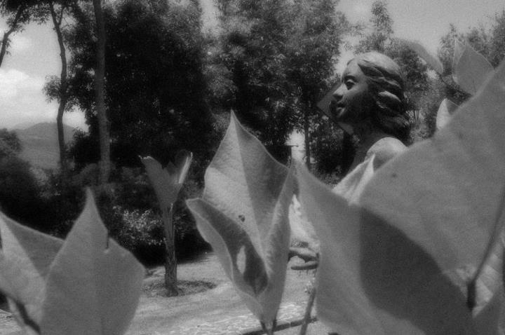 Maestro Juan Torres Calderon Morelia Michoacan Artist & Sculptor