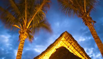 Alamar Vacation Rentals, La Cruz de Huanacaxtle, Nayarit Mexico