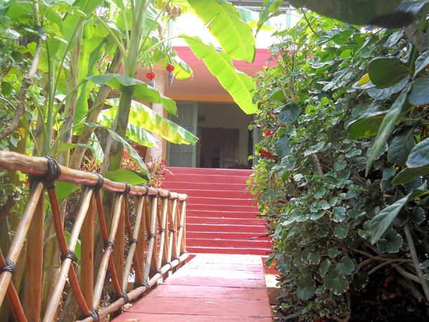 Casa Hamaca Jungle Garden